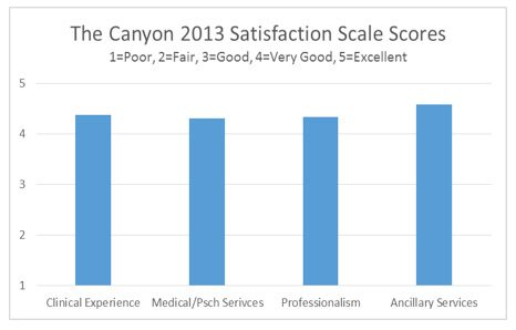 The Canyon 2013 Satisfaction Scale Scores